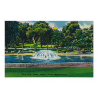 View of Boston Common Frog Pond Poster