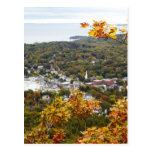 View of Camden Hills State through Fall Trees Postcard