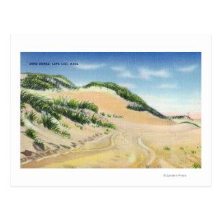 View of Cape Cod Sand Dunes Postcard