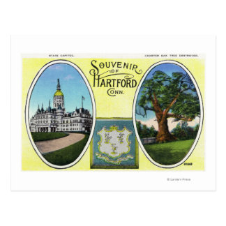 View of Capitol Bldg and Oak Tree Postcard