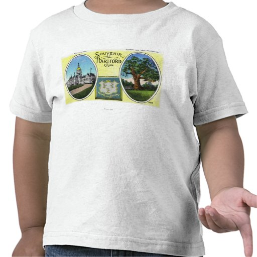 View of Capitol Bldg and Oak Tree Tshirts
