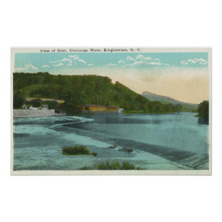 View of Chenango River and Dam Poster