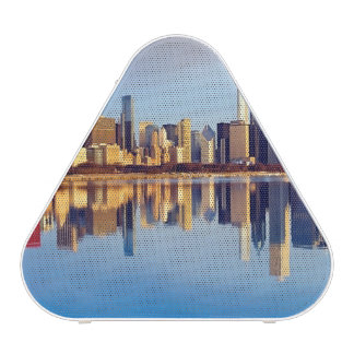 View of Chicago skyline with reflection Bluetooth Speaker