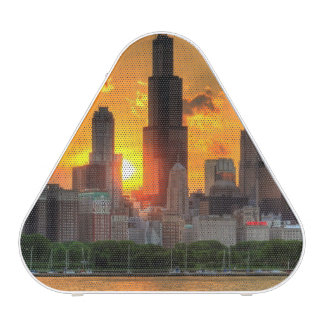 View of Chicago's skyline from  Adler Bluetooth Speaker