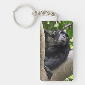 View Of Chimpanzee (Pan Troglodytes) In Tree Keychain