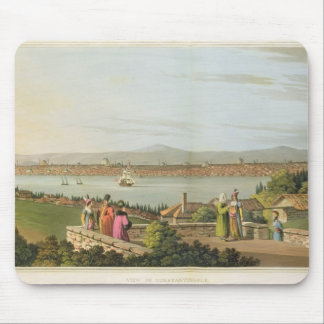View of Constantinople, plate 1 from 'Views in the Mouse Pad