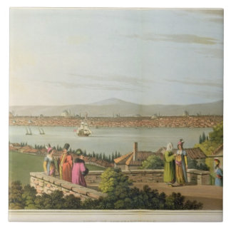 View of Constantinople, plate 1 from 'Views in the Ceramic Tile