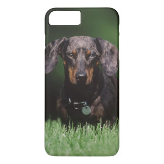 View of Dapple colored Dachshund iPhone 7 Plus Case