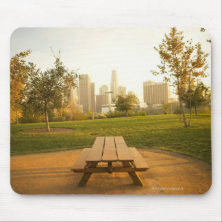 View of downtown from picnic in urban park mouse pad