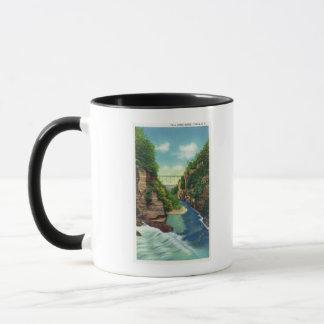 View of Fall Creek Gorge Mug