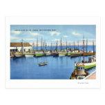 View of Fishing Fleet in the Harbor Postcard