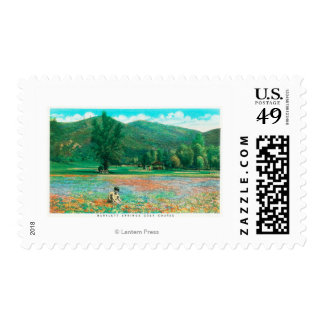 View of Flowering Field Postage Stamp
