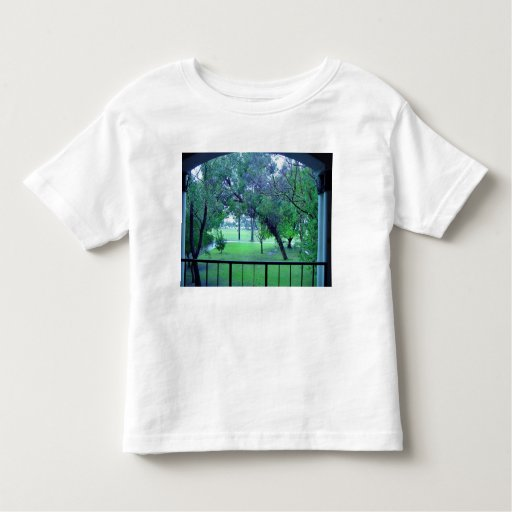 View of garden from building tshirt