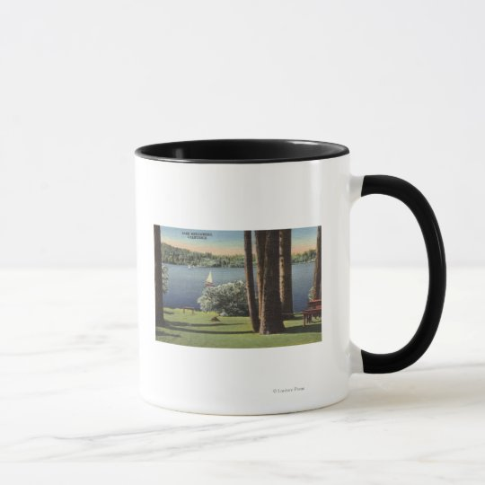 View of Grassy Shore & Lake Mug