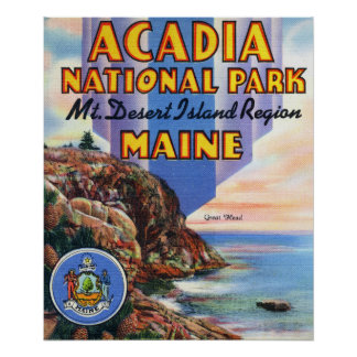 View of Great Head and Maine Seal Posters