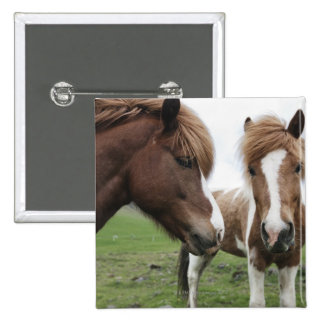 View of Horse, close-up 2 Inch Square Button