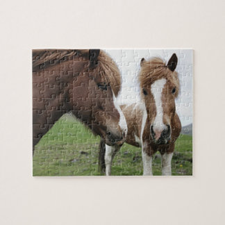 View of Horse, close-up Jigsaw Puzzle