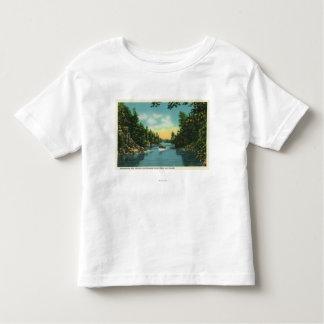 View of International Rift Toddler T-shirt