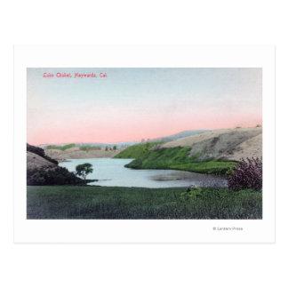 View of Lake ChabotHayward, CA Postcard