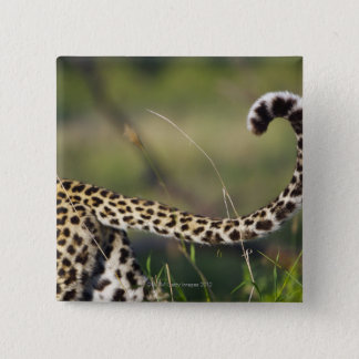 View of Leopards tail (Panthera pardus), Pinback Button
