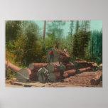 View of Lumberjacks, Logging SceneSterling, CA Poster