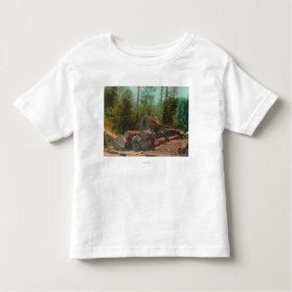 View of Lumberjacks, Logging SceneSterling, CA Toddler T-shirt