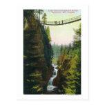 View of Lynn Canyon Suspension Bridge Post Card