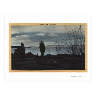 View of Mono Lake Postcard