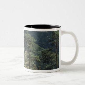 View of Mount Brocken, 1829 Two-Tone Coffee Mug