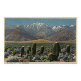 View of Mt. San Jacinto Near Palm Springs Poster