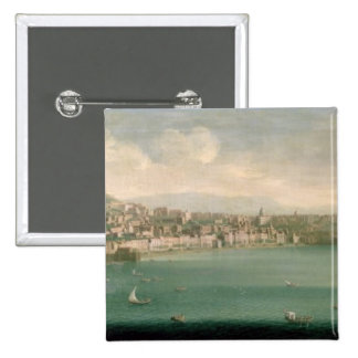 View of Naples from the west, 1730 Pins