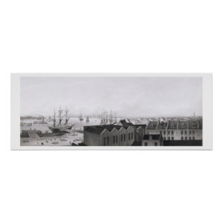 View of New Orleans taken from the Lower Cotton Pr Poster