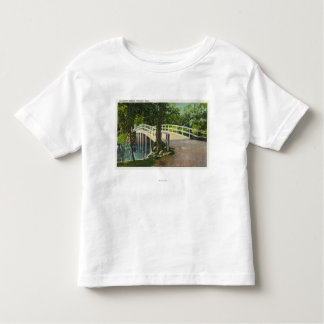 View of Old North Bridge Toddler T-shirt