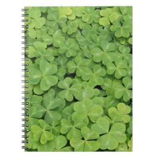 View of Oxalis Oregana wood Sorrel Foliage Notebook