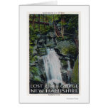 View of Paradise Falls Greeting Cards