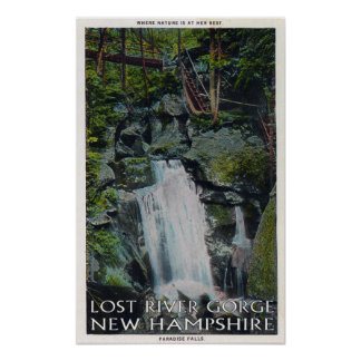 View of Paradise Falls Poster
