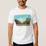 View of Park Avenue Idaho Falls, ID T-Shirt
