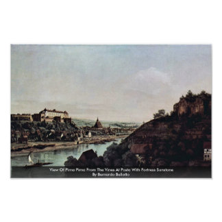 View Of Pirna Pirna From The Vines At Posta Print