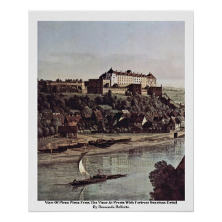 View Of Pirna Pirna From The Vines At Prosta Posters