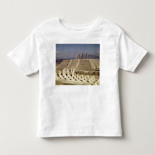 View of Pyramid B, Pre-Columbian T Shirt