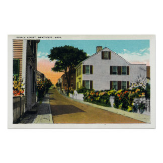 View of Quince Street Poster