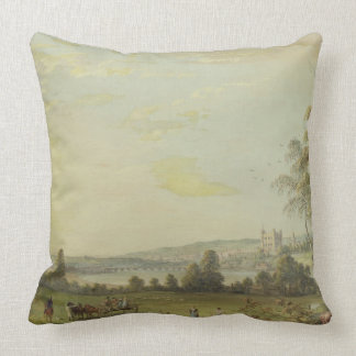 View of Rochester Throw Pillow