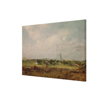 View of Salisbury Canvas Print