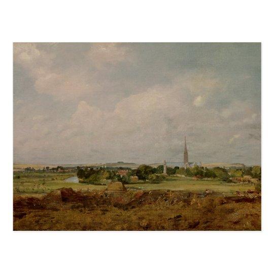View of Salisbury Postcard