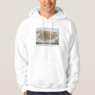 View Of San Francisco, 1878 Hooded Sweatshirt