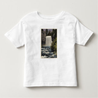 View of San Joaquin River & Rainbow Falls Toddler T-shirt