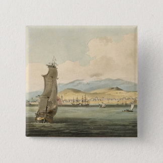 View of Santa Cruz, plate 3 from 'A Voyage to Coch Pinback Button