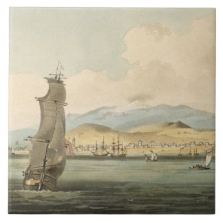 View of Santa Cruz, plate 3 from 'A Voyage to Coch Tile