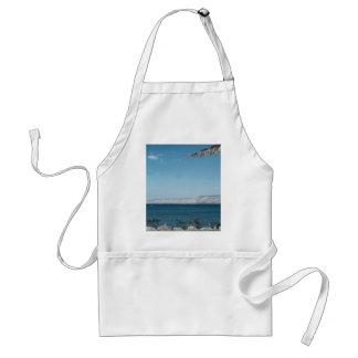 View of Sea of Galilee from south shore Israel Aprons
