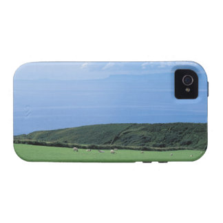view of sheep grazing on lush hillside iPhone 4 cases